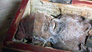 ¿ENCUENTRAN DUENDE MOMIFICADO EN SUECIA? 23 DE MARZO 2015 (EXPLICACIÓN)