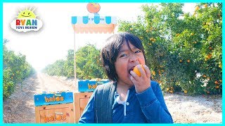 Ryan Takes a Trip in an Airplane to the Wonderful Halos Mandarin Orchards in California!