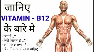 Vitamin B12 Functions In Our Body |Hindi| Vitamin B12 Source - Supplements