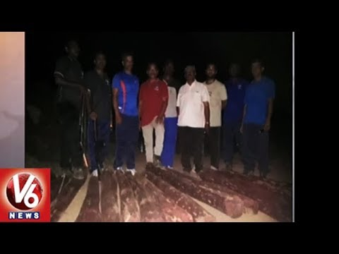 Task Force Police Seizes Sandalwood Logs In Tirumala Tirupati | V6 News