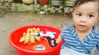 Đồ Chơi Trẻ Em Bé Kent Trò Chơi Làm Bể Nuôi Con Vịt ❤ PinPin TV ❤