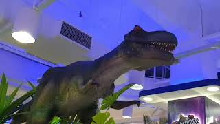 #Dinosaur Gaint life size dinosaur at kids toy store l Ryan's Video
