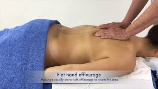 Massage techniques - effleurage on the back