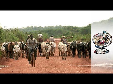 The Tragic Cost Of Progress In Ethiopia