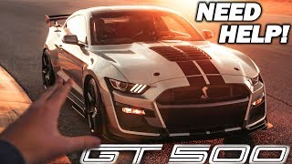 Picking The Color Of My 2020 SHELBY GT500! *NEED YOUR HELP*