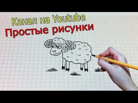 Видео как нарисовать барашка
