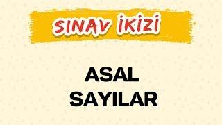 ASAL SAYILAR - Yeni Nesil Sorular - Şenol Hoca