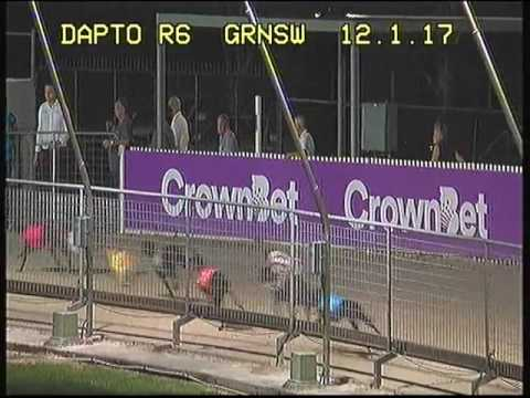 DAPTO-12012017-RACE-6
