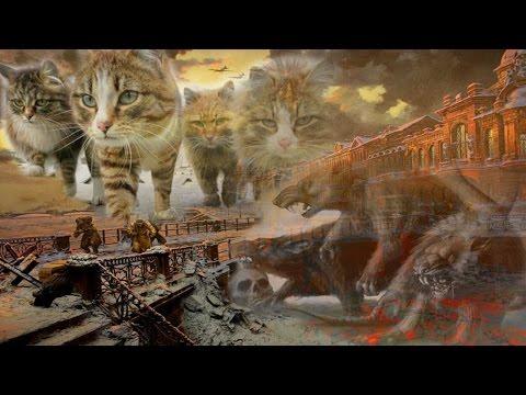 В блокадном Ленинграде:  Как кошки спасали людей