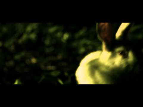 Tierra de Conejos