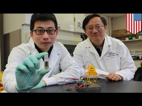 Researchers develop sugar-powered batteries