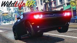 WIR machen die Stadt UNSICHER! 🚦 - GTA 5 WildLifeRP #4 - WildLifeRP - Daniel Gaming