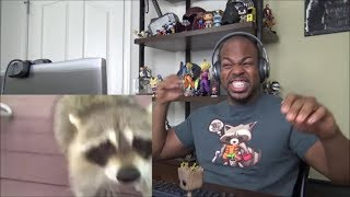 When animals attack humans: Raccoon edition - REACTION!!!