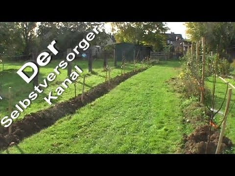Obstanbau Im Garten Aber Richtig