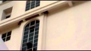 BURUNG WALET BUAT SARANG ATAS HOTEL  14012013616.mp4