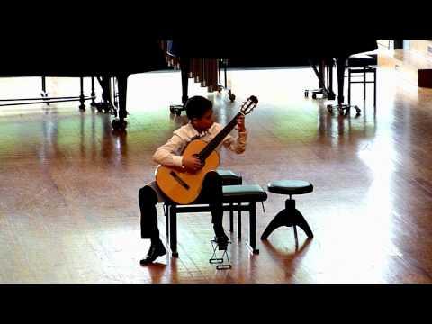 Antonio Lauro: El Marabino - Vidak Micovic (1999), guitar