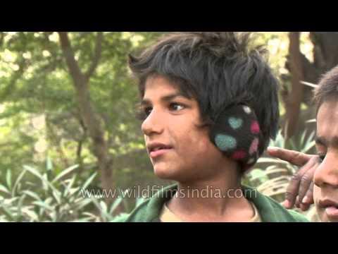 Handsome rag picker boy on Delhi streets