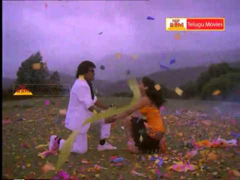 Raja Chinna Roja - Telugu Movie Video Song - Rajinikanth,gowtami video