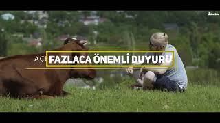 SON DAKİKA ŞOK!! MEHMET AYDIN'la Telefon Bağlantısı   Çiftlik Bank Belgeseli