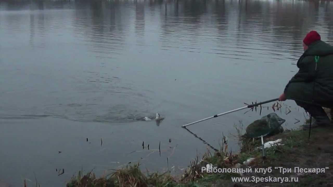 рыболовный на открытом шоссе