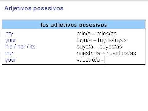 Los adjetivos y pronombres posesivos del inglés - Namathis.com