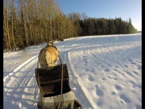 sleigh ride 2019 MP3