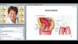 genyoutube - Download Youtube to mp3: Воспалительные заболевания женских органов.