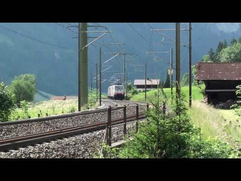 Live Trains - Trains In Landscape