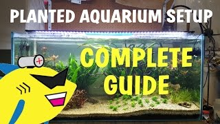 PLANTED AQUARIUM SETUP: Complete Guide To A Soil Planted Tank