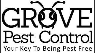Grove Pest Control Audit (Public)