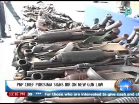 New Guns 2013 Gun Law || Nov 25 2013