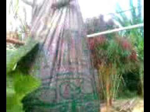 HIDROPONIA MAIS AGUAPONIA DE MORANGOS VERTICAL-TEIXEIRA/PB