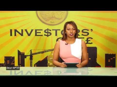 Investors' Cafe: Season One Wrap-Up