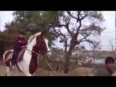 Manan Horse Riding In Chittor Fort 30 12 2013 video