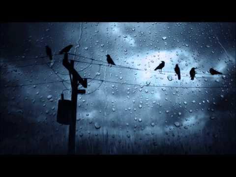 Прилепина Кристина - Всю ночь