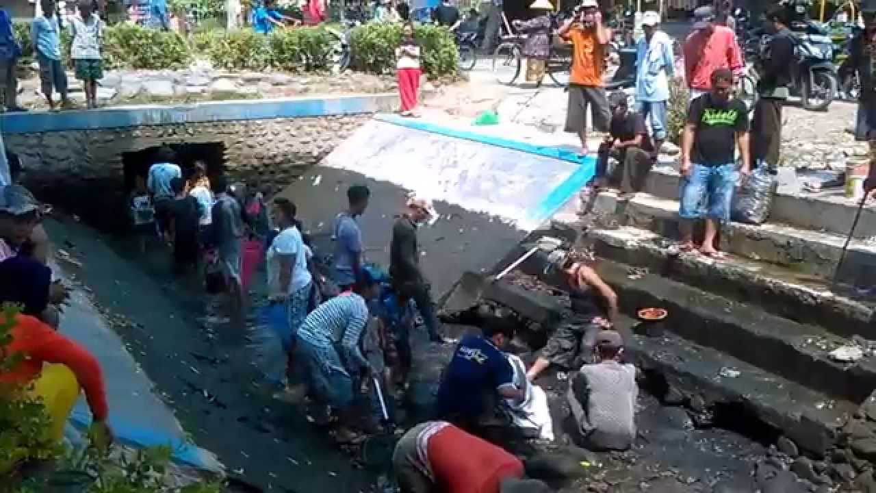 [people scramble for fish in rivers and dams] Video