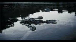 Horror Hörspiel - Fluss des Grauens