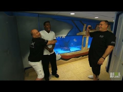 Aftershow Tracy Morgan S Octopus Tank Tanked Youtube