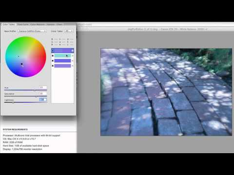 Photoshop Playbook: How to Use the DNG Profile Editor to Adjust Color and Light