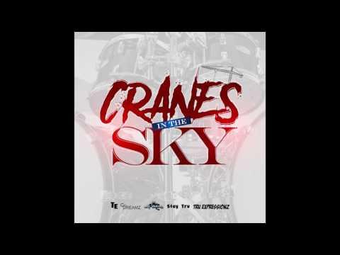 download lagu Tru Expressionz -  Cranes In The Sky Go- gratis