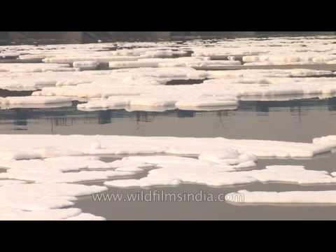 Pollution in Yamuna River