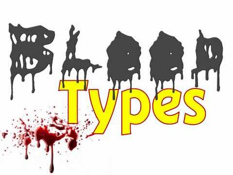 Blood Type Genetics