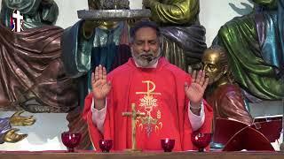 2020.08.14 - Holy Mass