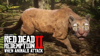When Animals Attack In Red Dead Redemption 2 (RDR2 Funny Moments)