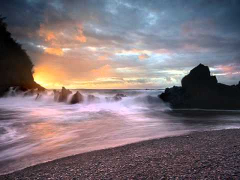 Ziggy Marley(Beach In Hawaii)