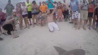 [Monster Sandbar Shark Caught On The Beach] Video