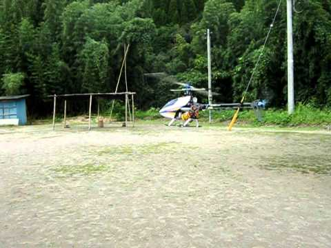 T-REX450 sport ホバテスト.avi