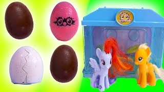 Hatching Baby Chicks + Surprise Chocolate Eggs with My Little Pony - Toy Video