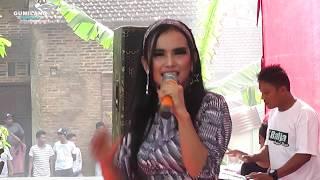 download lagu Tak Antem Watu Maya Sabrina  D'radja Cepogo gratis