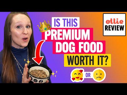 Download Lagu Ollie Review: Fresh & Clean Dog Food Packs Worth It? (Taste Test).mp3